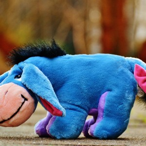 donkey-1185724_1280
